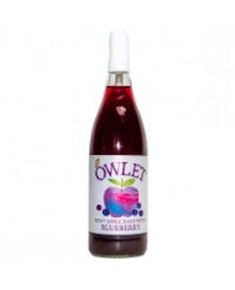 Owlett Apple Juice with Blueberry 1L Bottle