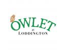 Owlett